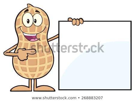 Grappig pinda cartoon mascotte karakter tonen Stockfoto © hittoon