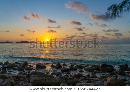 Spiaggia tramonto isola Seychelles foglie di palma albero Foto d'archivio © AndreyPopov