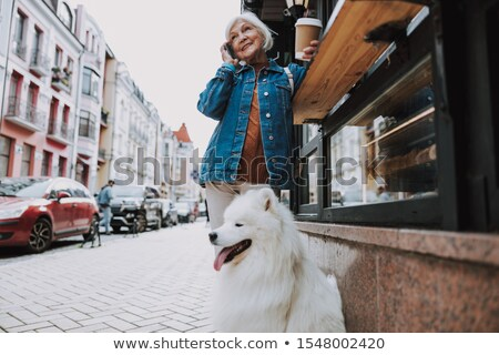 Grandmother with coffee walking a dog Stock photo © vasilixa