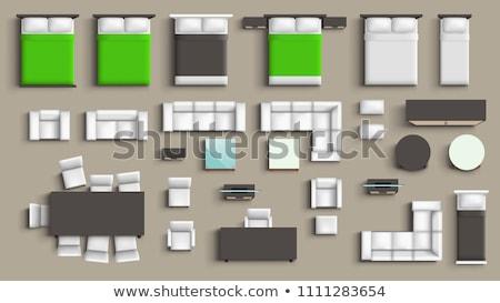 leguaan · vergadering · illustratie · natuur · achtergrond - stockfoto © robuart