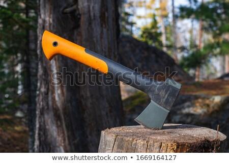 Stock fotó: Tűzifa · utazó · kempingezés · vektor · erdő · vág