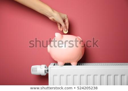 spaarvarken · radiator · hand · temperatuur · vrouw · huis - stockfoto © andreypopov