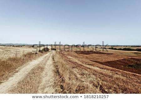 Tuscany -  Landscape after harvests Stock photo © wjarek