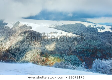 First winter snow in mountain and inclement windy weather beginn Stock photo © wildman