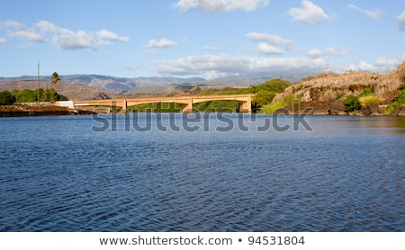 Estuary of Waimea River in Kauai Stock photo © backyardproductions