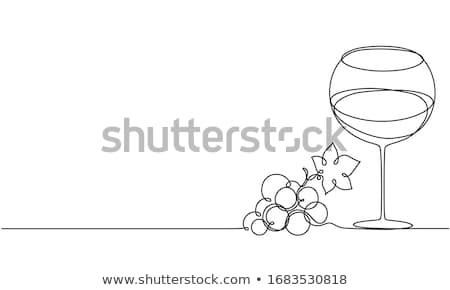 Wines and Vines Stock photo © xedos45