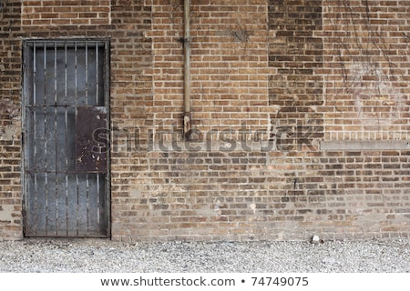 grunge gray wall and barred door Stock photo © inxti