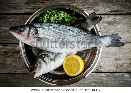 sea bass with lemon and parsley Stock photo © Antonio-S