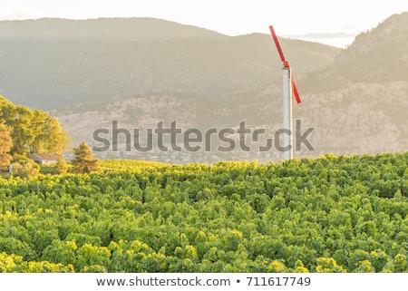 wind machine Stock photo © jayfish