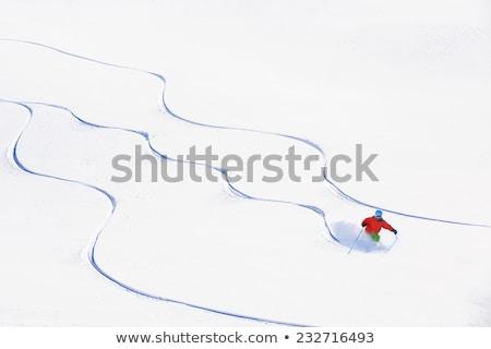 Skiing traces Stock photo © smuki