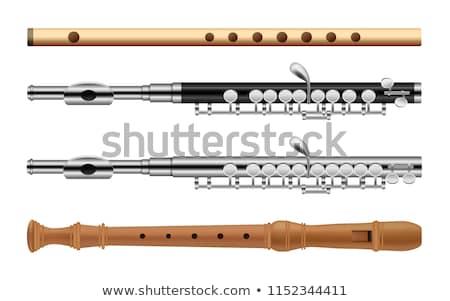 флейта инструмент музыку изолированный белый Сток-фото © cteconsulting