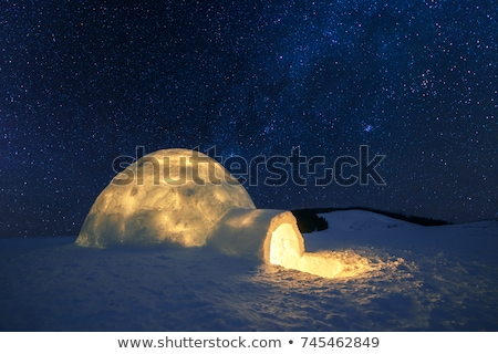 Igloo on a winter landscape Stock photo © zzve