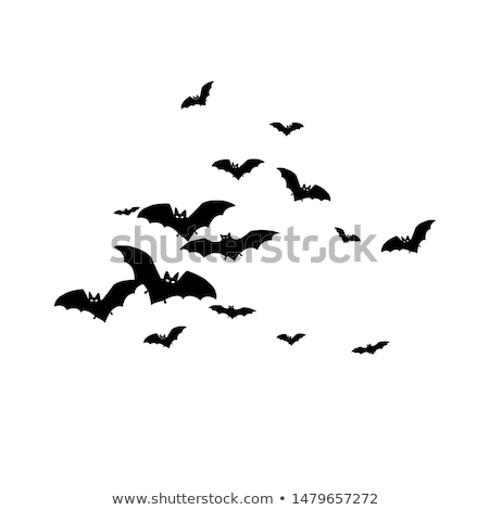Halloween nacht zwarte silhouet donkere Stockfoto © beaubelle