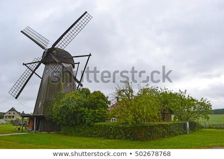 伝統的な 木製 風車 豊かな 庭園 4 ストックフォト © juniart