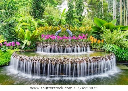 Fontana giardino botanico giardino bella natura panorama Foto d'archivio © alex_grichenko