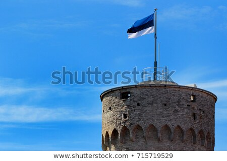 Észtország zászló kék ég repülés szél mély Stock fotó © 5xinc