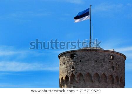 estonia flag on blue sky stock photo © 5xinc
