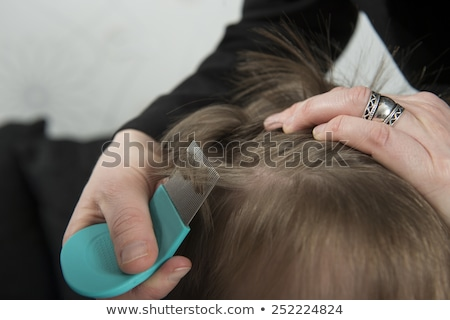 Searching for lice on a childs head Stock photo © Arrxxx