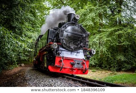 Locomotiva estilizado ferrovia transporte diferente cores Foto stock © tracer