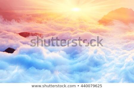 Photo stock: Sunrise · forêt · soleil · belle · nuages