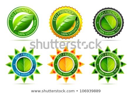 Eco Friendly Yellow Vector Icon Button Stock photo © rizwanali3d