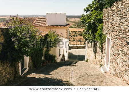 street with white houses monsaraz Stock photo © compuinfoto