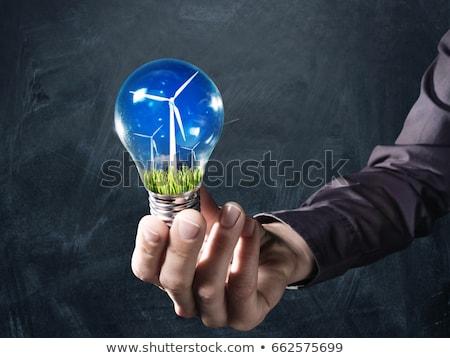 Woman with lightbulb and windmills inside. Stock photo © RAStudio