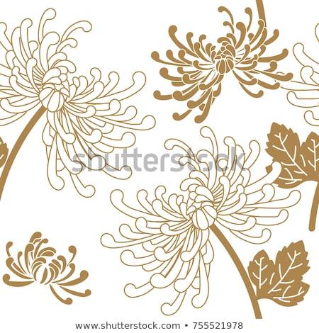 Asia stijl texturen achtergronden abstract ontwerp Stockfoto © ilolab