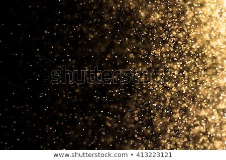 Karácsony faág kék absztrakt természet fény Stock fotó © neirfy