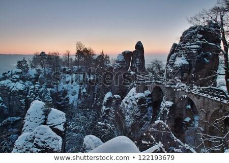 elbe sandstone mountains in winter stock photo © lianem