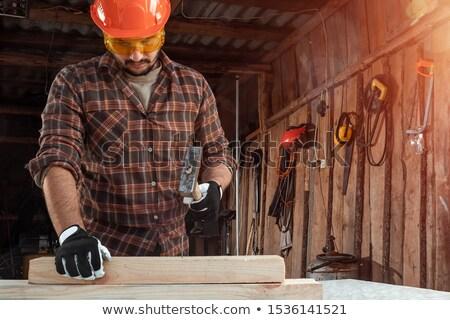 Cartoon · плотник · мастер · на · все · руки · молота - Сток-фото © rastudio