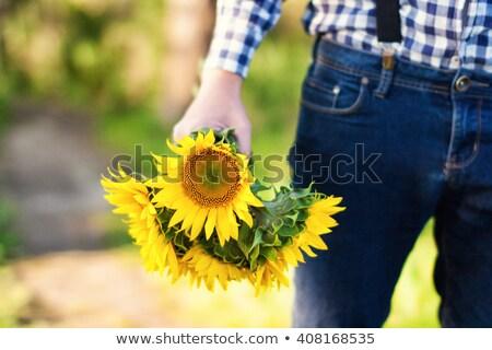 Outdoor portret man zonnebloemen tuin zonnebloem Stockfoto © IS2