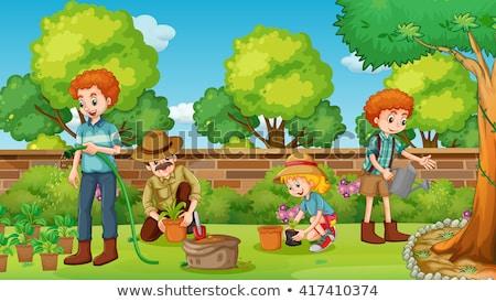 Apa lánygyermek ültet fa kert udvar Stock fotó © wavebreak_media