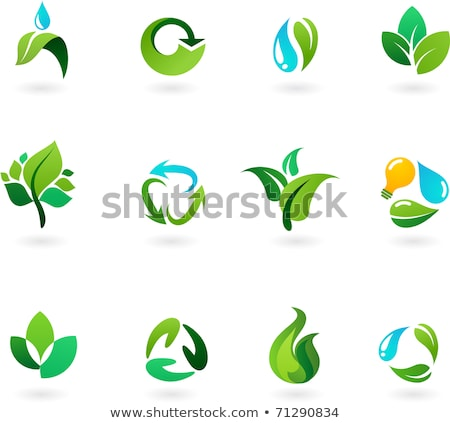 water drop and green tree leaf - icon design Stock photo © djdarkflower