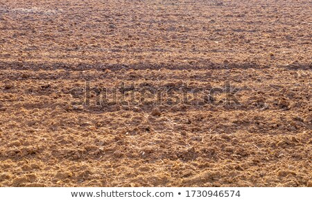 Preparation of agricultural areas for sowing works, cultivation of the soil by a tractor after harve Stock photo © artjazz