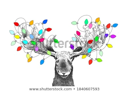 Funny Moose Christmas Tree Stock photo © Lightsource