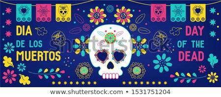 Nap halott weboldal bannerek mexikói ünnep Stock fotó © Anna_leni