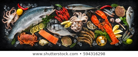 frescos · crudo · mar · alimentos · especias · vino · blanco - foto stock © karandaev
