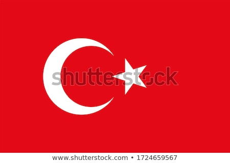 Icona design bandiera Turchia illustrazione arte Foto d'archivio © colematt