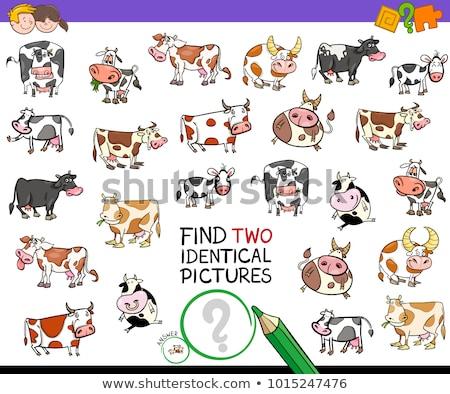 find two identical farm animals game for children Stock photo © izakowski