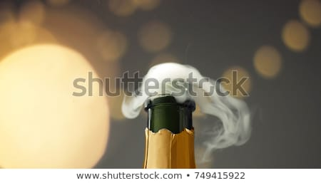 close up of champagne bottle on christmas stock photo © dolgachov