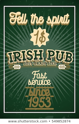 Color vintage irish pub banner Photo stock © netkov1