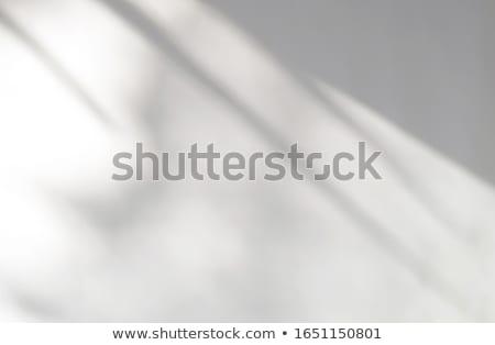 белый окна шаблон закрыто прозрачный домой Сток-фото © romvo