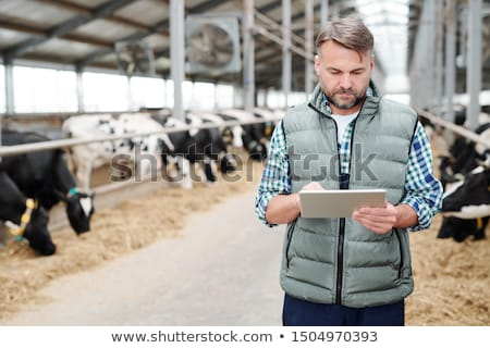 Confident worker of large dairy farm with touchpad standing by cowshed Stock photo © pressmaster