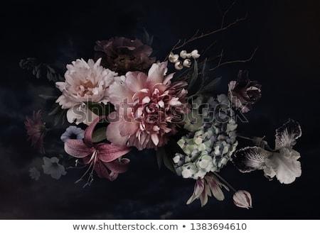 peony flowers bouquet stock photo © karandaev