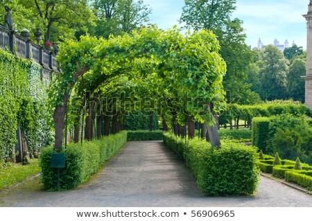 Residenza giudice giardino Germania albero verde Foto d'archivio © borisb17