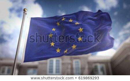 European Union flag on a blurred background. Stock photo © artjazz