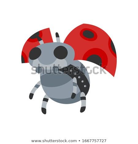 Vektör karikatür mekanik uğur böceği oyuncak Stok fotoğraf © designer_things