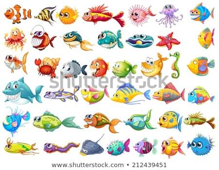 Szett tenger teremtmények fehér illusztráció víz Stock fotó © bluering