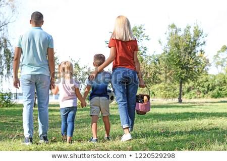 Familie cos de picnic mers vară parc timp liber Imagine de stoc © dolgachov